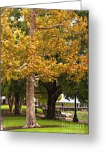 Strolling In Waterfront Park Greeting Card