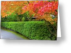 Strolling Path Lined With Japanese Maple Trees In Fall Greeting Card