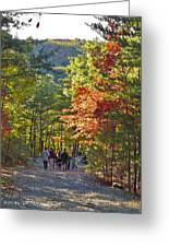 Strolling The Upper Cascades Trail Greeting Card