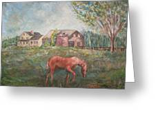 Stroudwater Farm-with Horse Greeting Card