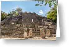 Structure Two In Calakmul Greeting Card