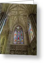 Structures Of St. Patrick Cathedral 3 Greeting Card