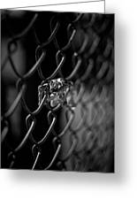 Stuck In A Fence Greeting Card