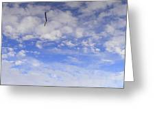 Stuck In The Clouds Greeting Card