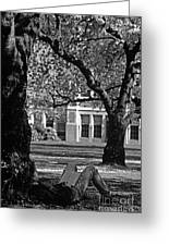 Student Reading Under Tree Greeting Card