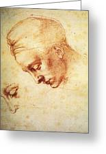 Study For The Head Of Leda Greeting Card