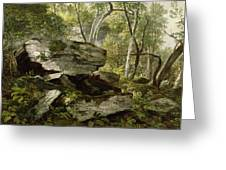 Study From Nature   Rocks And Trees Greeting Card