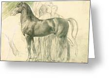 Study Of A Horse With Figures Greeting Card by Edgar Degas