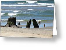 Stumpy Beach Greeting Card