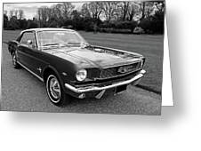Stunning 1966 Mustang In Black And White Greeting Card