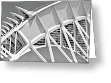 Stunning Structure - Black And White Greeting Card