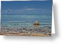 Sturgeon Bay Lake Michigan Greeting Card