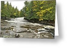 Sturgeon River Greeting Card