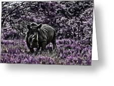 Styled Environment-the Modern Trendy Rhino Greeting Card