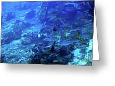 Submarine Underwater View Greeting Card