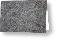 Subtle Lichen On Granite Texture Greeting Card