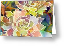 Succulent Mirage 2 Greeting Card by Hailey E Herrera