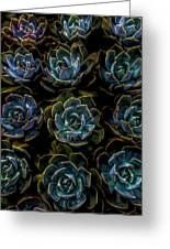 Succulent Greeting Card by Rod Sterling