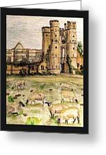 Suffolk Sheep Grazing In Sussex Greeting Card