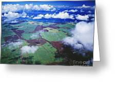 Sugarcane Fields In Central Maui Greeting Card