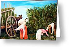 Sugarcane Worker 1 Greeting Card