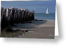 Sullivans Island 42611-1 Greeting Card by Melissa Wyatt