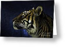 Sumatran Tiger Profile Greeting Card