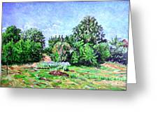 Summer Afternoon. Greeting Card
