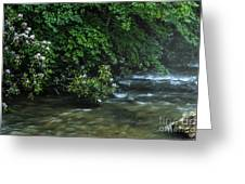 Summer Along Birch River Greeting Card