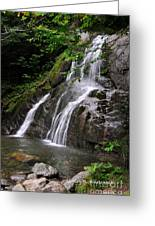 Summer At Glen Moss Falls Greeting Card