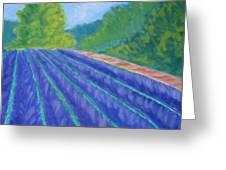 Summer At The Lavender Farm Greeting Card