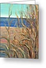 Summer Beach Grasses Greeting Card