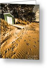 Summer Beach Shacks Greeting Card