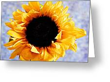 Summer Beauty Greeting Card