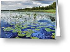 Summer Blue  Lake Under Clody Grey Sky With Forest On Coast Greeting Card
