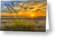 Summer Breezes Greeting Card