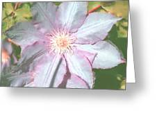 Summer Clematis Greeting Card