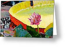 Summer Colors On The Pond Greeting Card