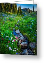 Summer Creek Greeting Card