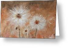 Summer Dandelions Greeting Card