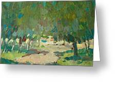 Summer Day In City Park. Trees Greeting Card