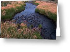 Summer Evening On Palouse River Greeting Card