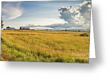 Summer Farmscape Greeting Card