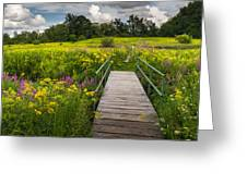Summer Field Of Wildflowers Greeting Card