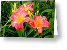 Summer Flame Greeting Card