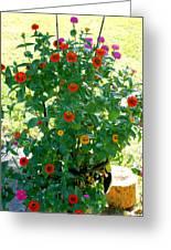 Summer Flowers 10 Greeting Card