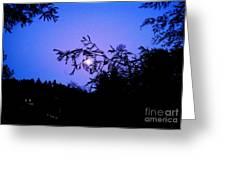 Summer Full Moon Greeting Card by Garnett  Jaeger