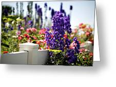 Summer Garden 1 Greeting Card