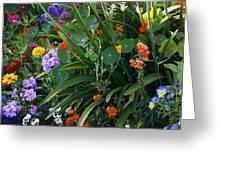 Summer Garden 2 Greeting Card