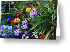 Summer Garden 3 Greeting Card